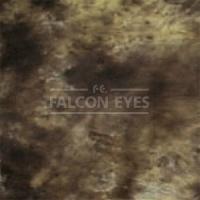 Тканевый фон Falcon Eyes BC-021 ВС-2970