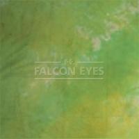 Тканевый фон Falcon Eyes BC-022 ВС-2970