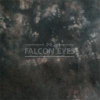 Тканевый фон Falcon Eyes BC-024 ВС-2770